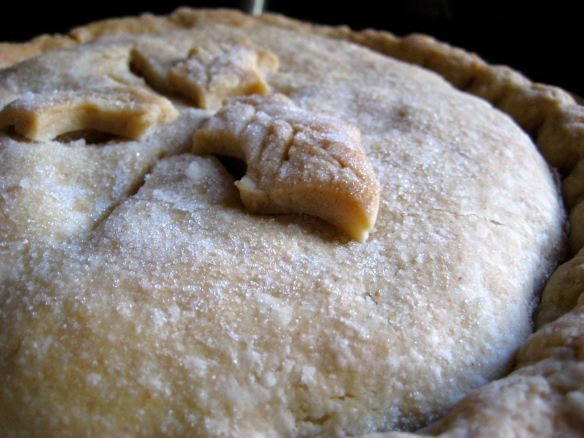 Homemade flakey pastry pie crust