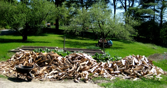 Roughly 5 cords of firewood, piled next to our garden, awaits stacking in our barn.